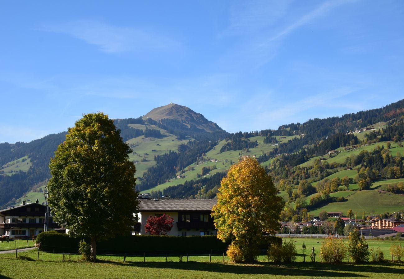 Ferienwohnung in Brixen im Thale - Brandstätter 2