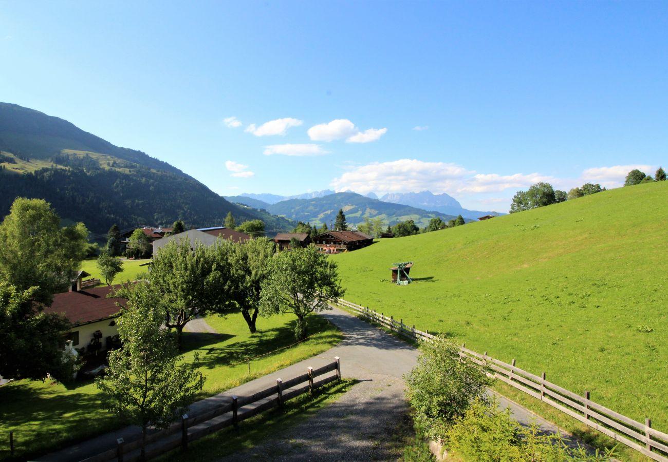 Ferienhaus in Kirchberg in Tirol - Lodge Pengelstein (ski-in/out)