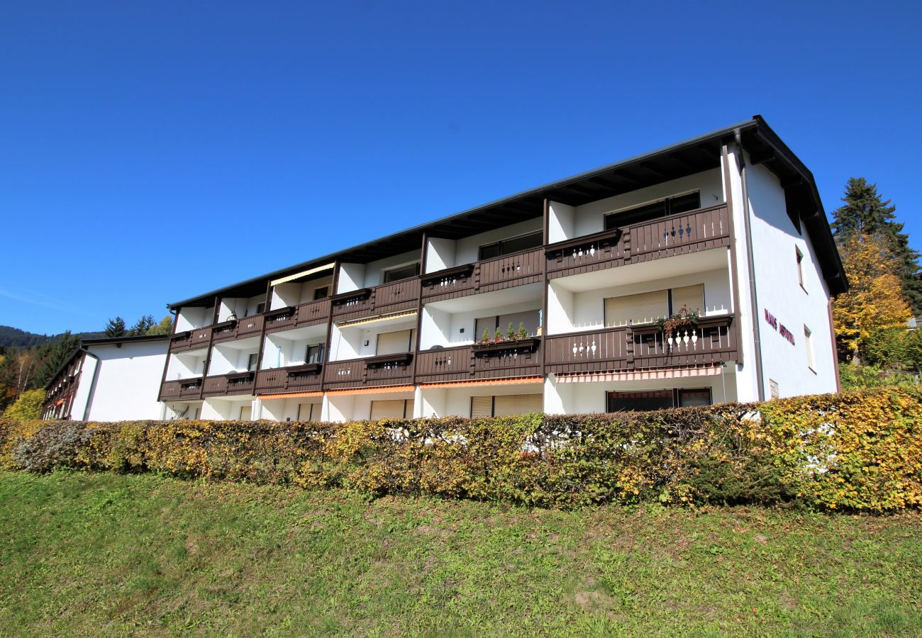 Appartement in Kirchberg in Tirol - Weinberg